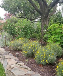 Outdoor Flowers Landscaped Walkway Natural Stone Wall Nj Venue